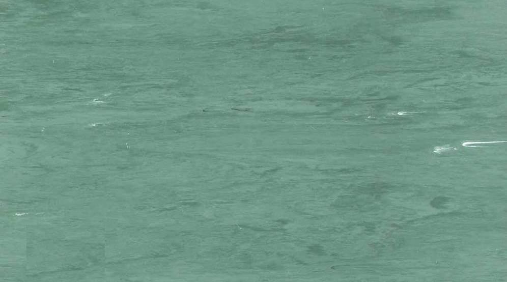 gerflor vinyl mipolam
